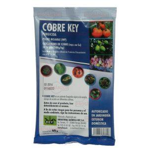 Cobre Key Jardinería Exterior Doméstica - Prosanzcu